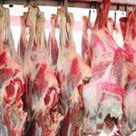 کنترل قیمت گوشت به در بسته خورد/ قیمت گوشت متاثر از خروج دام است
